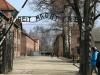 15 mars : visite d\'Auschwitz